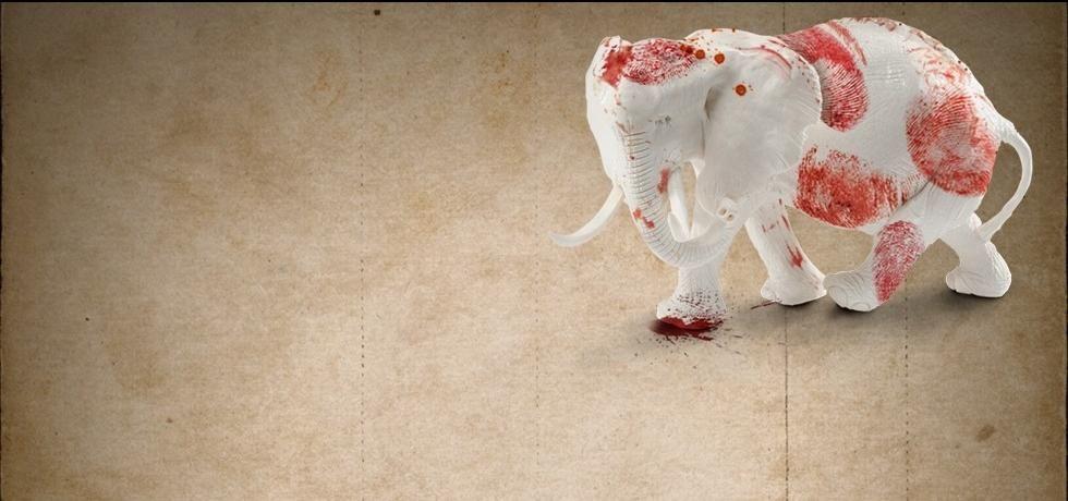 Em Guerra pelo Marfim