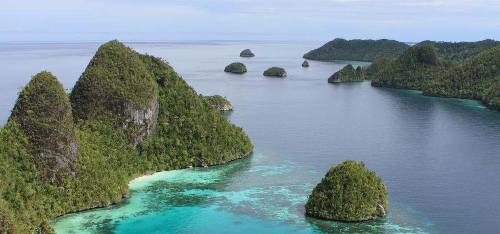 إندونيسيا البرية