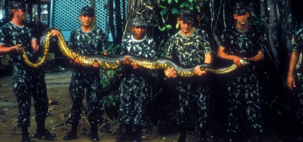 Amazzonia: viaggio nella Foresta