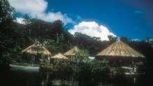 Amazzonia: viaggio nella Foresta programma