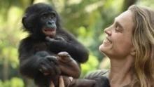 Afrikas wilde Schätze Programm