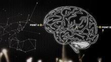 Brain Games Programm