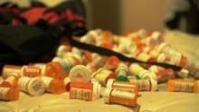 L'impero della droga: vacanze stupefacenti programma