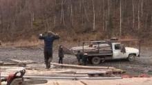 Yukon River Run show