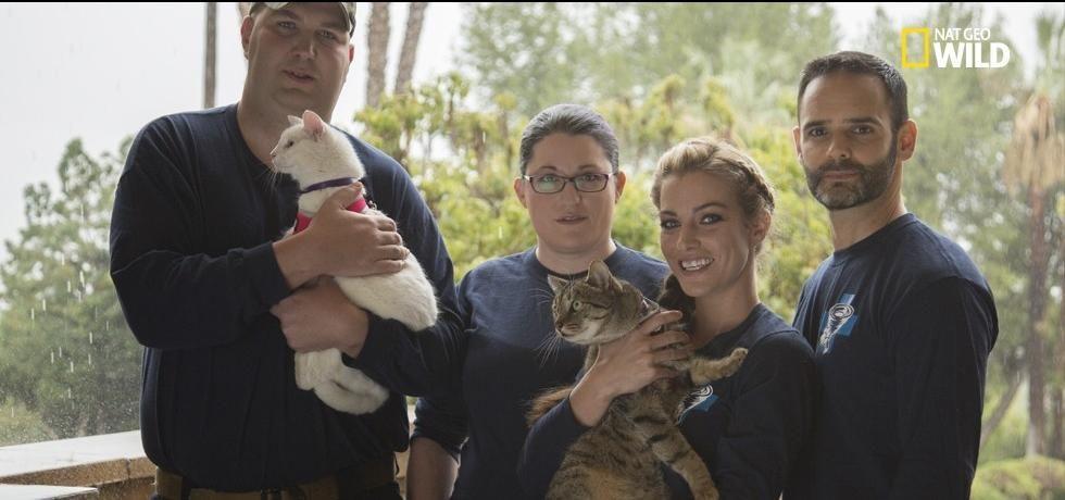 Rescate de mascotas