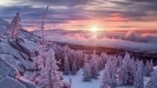 Siberia's Wild Year show