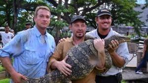 شکارچیان پایتون