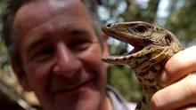 Aventură cu jaguari documentar