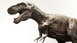 CSI dos Dinossauros
