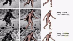Misterul lui Bigfoot imagine