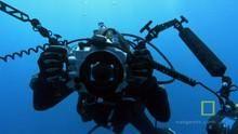 Рифы из кораблей программа