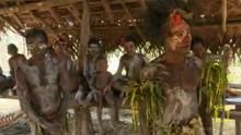Papua Nova Gvineja emisija