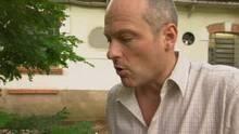 Smrtonosne gusenice i Manaus emisija