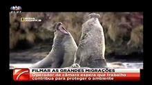 SIC Jornal da Noite - NGC - Grandes Migracoes programa