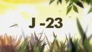 J-23 : Aurélie, la suricate photo