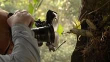 Photographes en mission Voir la fiche programme