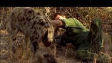 La reine hyène Voir la fiche programme