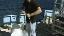 Webisode: הדייג המושלם תוכנית