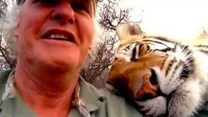 Ma vie avec les tigres photo
