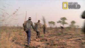 Kalahari Foto