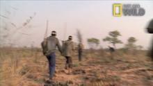 Kalahari Programma