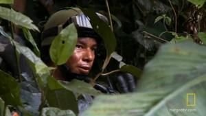 Jungle Coke Raid photo