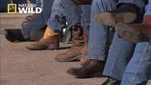 Classic Wild West Drama show