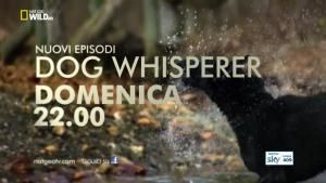 Dog Whisperer - I nuovi episodi foto