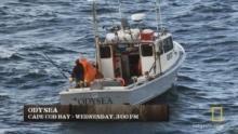 Tuna Wars show