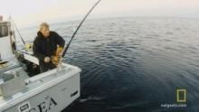 Solo Tuna Fishing show