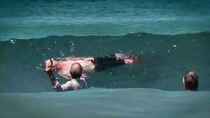 attaque de requin