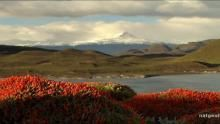 Torres del Paine National Park Programma