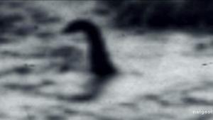 Příšera Loch Ness? fotografie