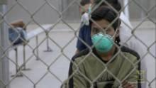 Swine flu outbreak show