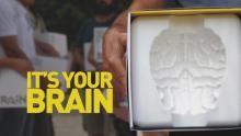 Brain Games: Teste o Seu Cérebro - Ação em Madrid programa