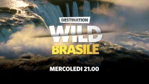 Destination Wild: ogni mercoledì alle 21:00 su Nat Geo Wild foto