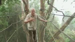 Stich mich! Borneo 1 Foto
