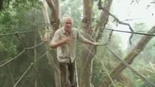 Stich mich! Borneo 1 Programm