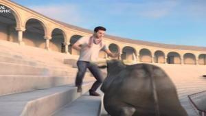 Sobrevivir al ataque de un toro foto