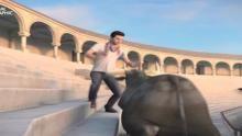 Sobrevivir al ataque de un toro Serie