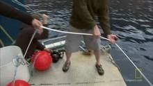 Homens-tubarão programa