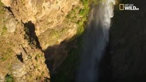 Wild Nilo - Le cascate del Nilo blu foto