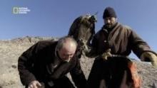 Entraînement à la chasse à l'aigle royal Voir la fiche programme