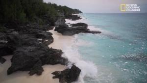 Alla scoperta delle Bermuda foto