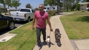 Notruf Hund - Einsatz für Cesar: Trailer Video