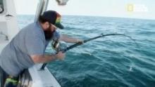 Sfida in mare aperto programma