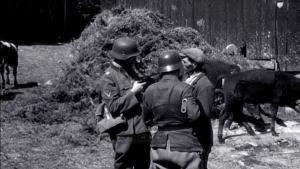 La verità sulla Seconda Guerra Mondiale foto