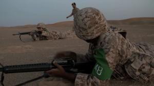 أبناء الإمارات في الخدمة الوطنية - الحلقة 2 صورة