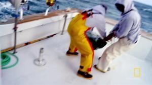 Toe-To-Toe Tail Ropes photo