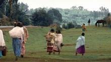 Ind i Kenya Program